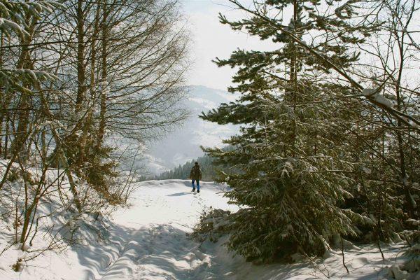 IMG_4543 Apuseni hiver - copie