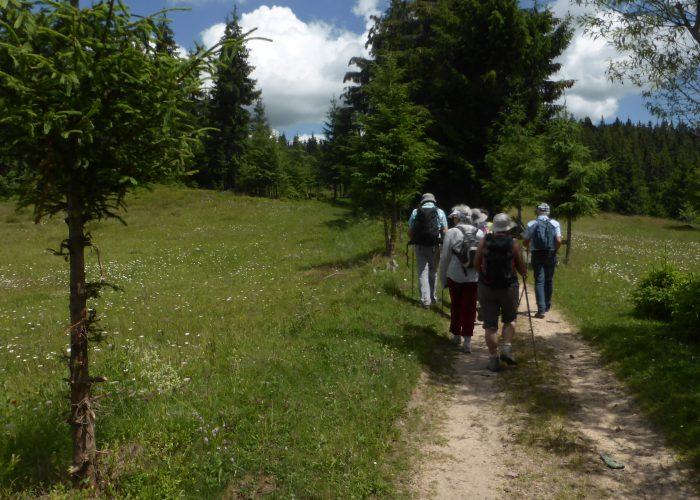 P1100944 rendo Monts Apuseni ©B.HOULIAT